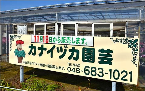 カナイヅカ園芸の風景2